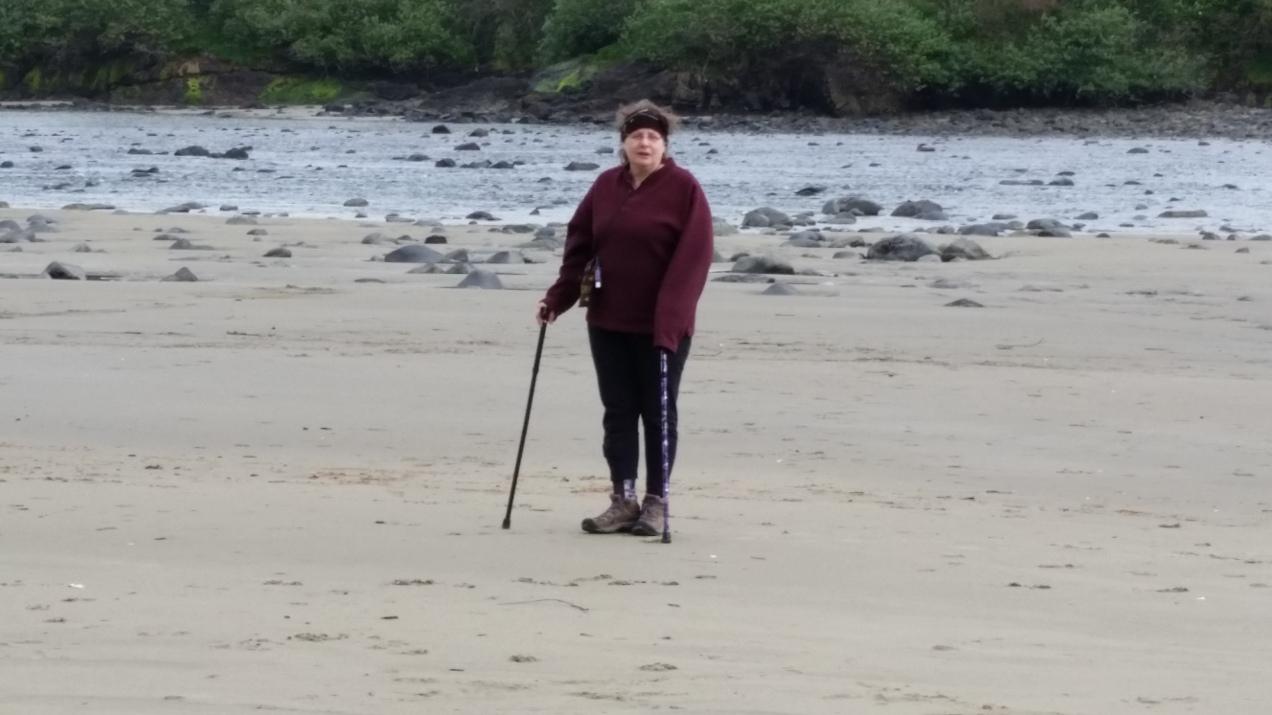 dide on the beach 2014